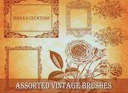 Brosses Vintage Assorties