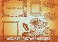 Escovas De Vintage Assorted
