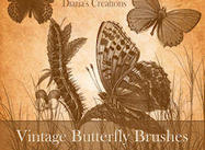 Vintage_butterfly_preview_small