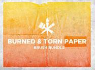 Bb_burned_torn