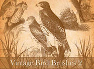 Vintage_bird_brush_2_preview_small