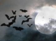10 Simple Vampire Bats Brushes (Halloween)