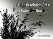 6 High Resolution Grass Brushes