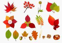 Fall Leaves Brush Pack