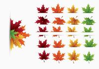 Maple Leaves Brush Pack