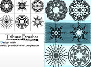 Tribune Brushes