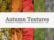 Kalte Autumn Leaves Texturen