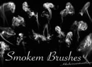 Smokem Brushes