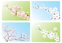 Cherry-blossom-wallpaper-pack-photoshop-psds
