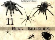 Bug-brushes