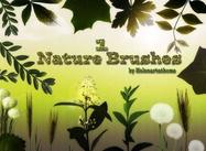 Nature1 Brushes