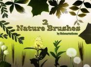 Nature2-brushes