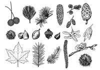 Things-in-the-forest-brush-pack-photoshop-brushes