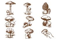 Hand Drawn Mushroom Brush Pack