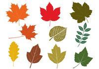 Pacote de escova de folhas de outono