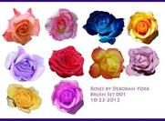 Rose Brush Pack de