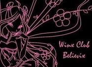 Winx Club Believix Fairy Brushes