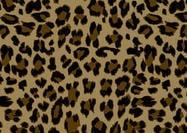 Leopardmuster