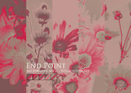 End Point Photoshop Gradients