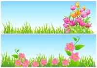 Tulpe und Floral Wallpaper Pack