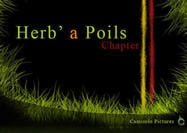 Herb' a Poils Grass Brushes Chapter 2 Camisole Pictures Brushes