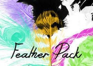 Schöne Feather Brush Pack (6 Federn)