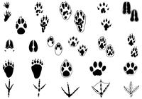 Animal Tracks Borste Pack Two