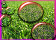 Special Happy Birthday Wish Grass PSD