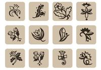Floral-icons-brush-pack-photoshop-brushes