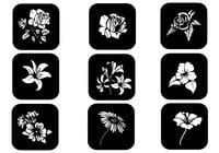 Black and White Floral Brushes-Pack