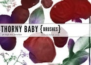 Thorny Baby Rose Brushes