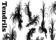 Tendrils-swirl-brushes