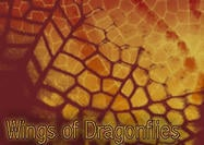 Wings of Dragonflies Brushes