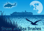 Straws-and-sea-brushes