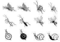 Hand-drawn-insect-brushes-pack