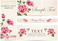 Vintage Rose Banner Bakgrund Pack
