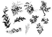 Natural Plant Brush Silhouette Elements Pack
