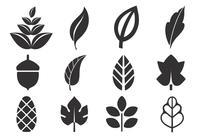 Pack de cepillos de hojas abstractas