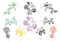 Hand Painted Floral Brushes Pack