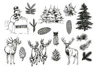 Natural-forest-and-winter-brushes-pack