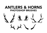 Antler-brushes-horns-brushes