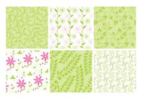 Pink Green Floral Backgrounds Conjunto PSD