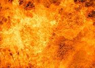 Krist-s-fire-brushes-set-4