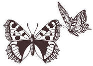 Free-butterfly-brushes