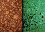 Free Grungy Bubble Textures
