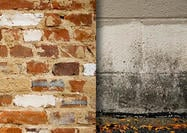 Gratis Stone & Brick Texture Pack