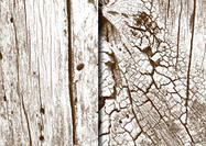 Free High Res Wooden Textures