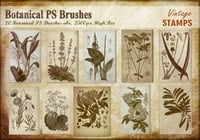 Vintage Botanical PS Brushes abr.