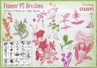 Vintage Flower PS Brushes abr.