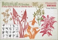 Pincéis do vintage Wildflower PS